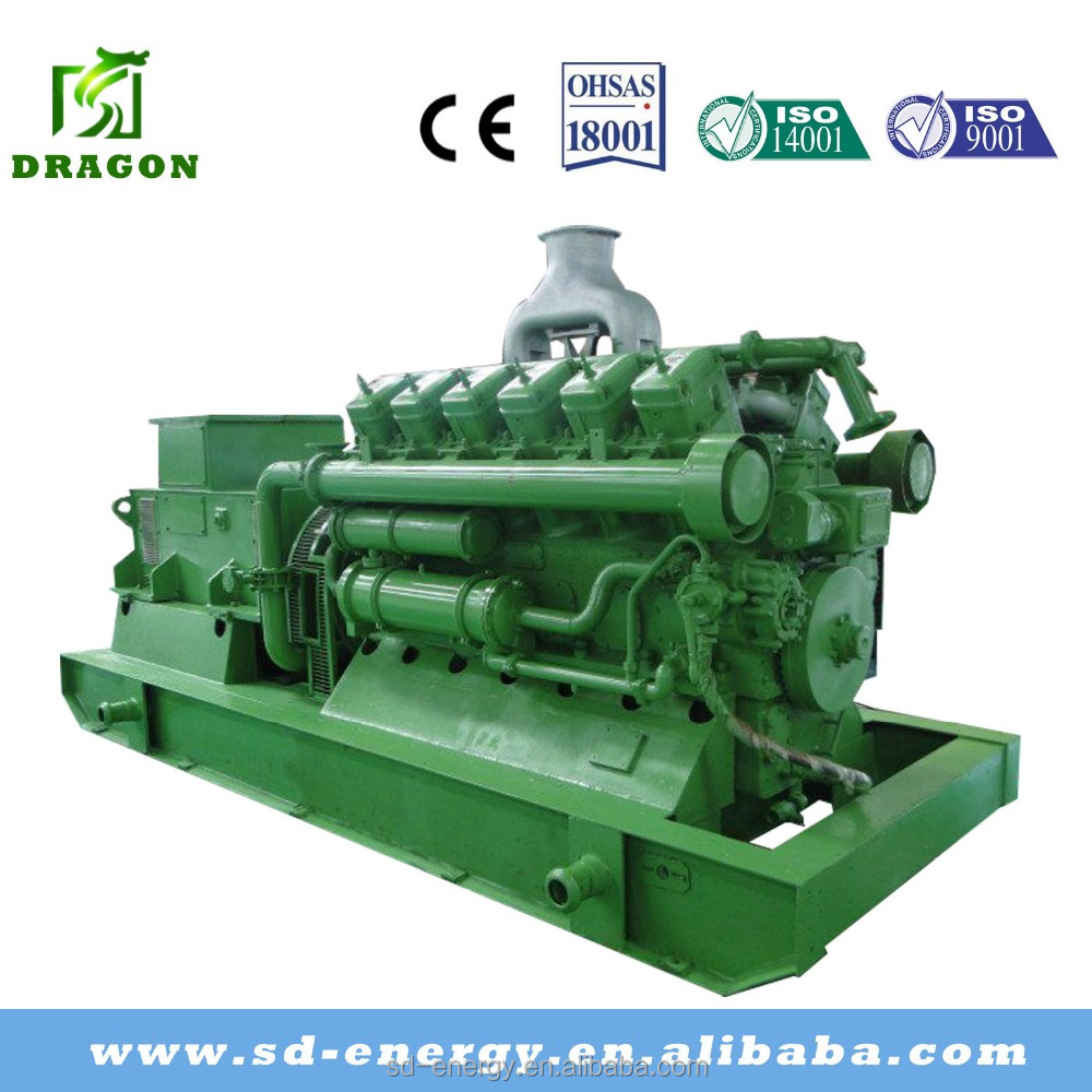 Industrial Gas alternator Generator Set for hot sale with global service