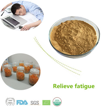 High quality cordyceps sinensis extract and wild cordyceps extract Polysaccharides 30%,50%