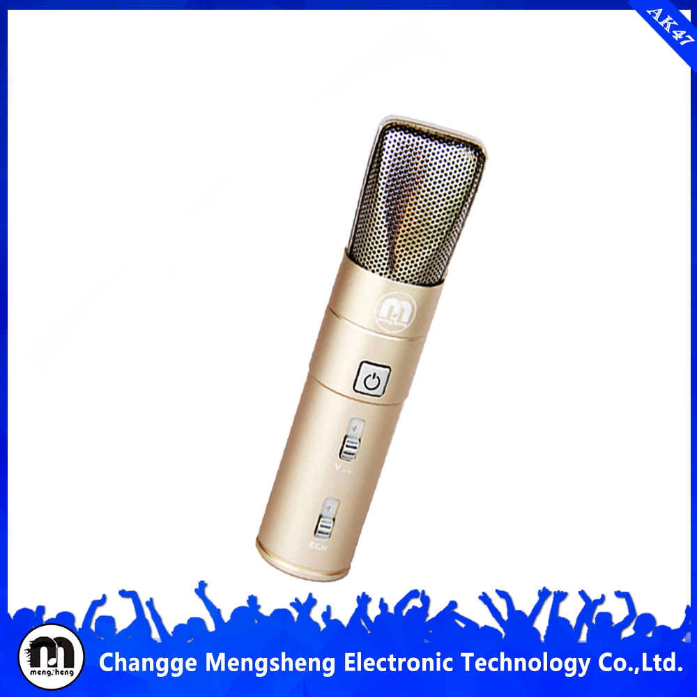 wifi mini and digital voice recorder with the microphone