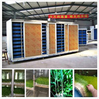 500kg/day Automatic hydroponic fodder machine for dairy/livestock/barley sprout machine