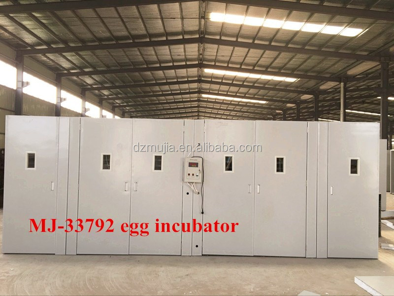 Mujia large incubatrice for eggs of used hen/China large incubator(12000eggs)