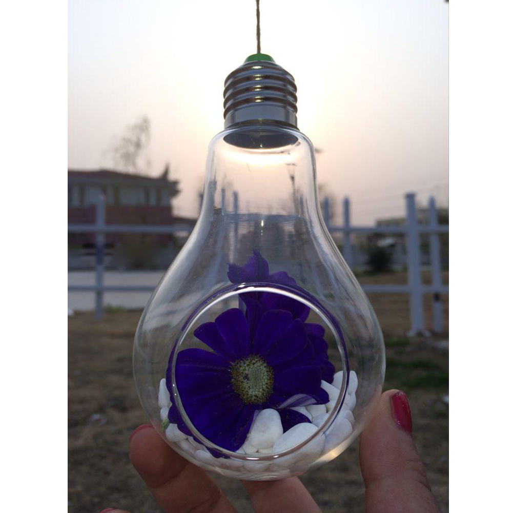 New Glass Bulb Lamp Shape Flower Water Plant Hanging Vase Container Pot Indoor Office Wedding