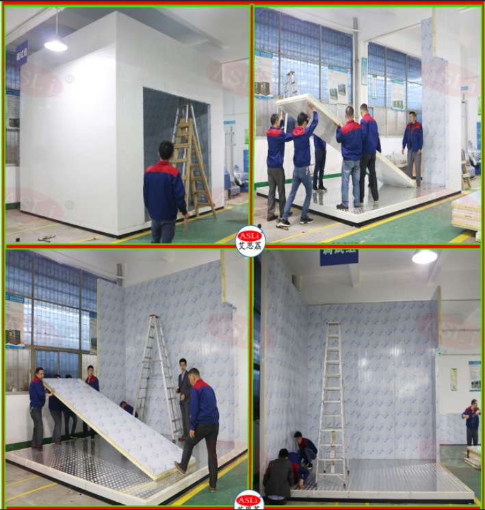 Welded / Modular Climatic Walk in Chamber/Climatic Chamber Room