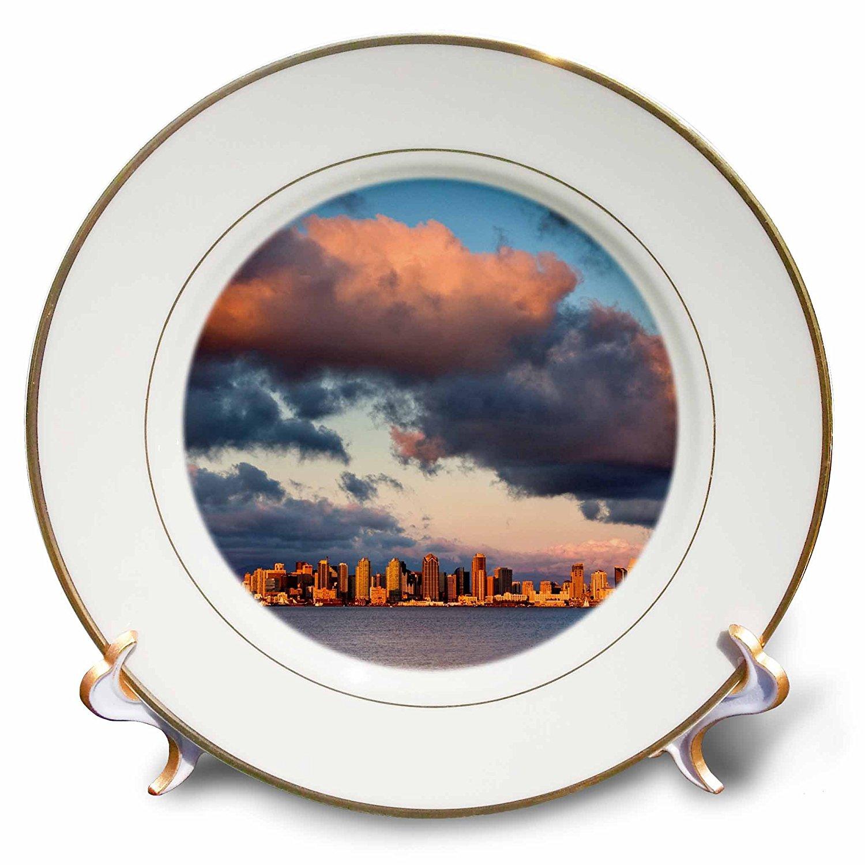 3dRose Danita Delimont - San Diego - California, San Diego, City skyline across San Diego Bay - 8 inch Porcelain Plate (cp_250630_1)