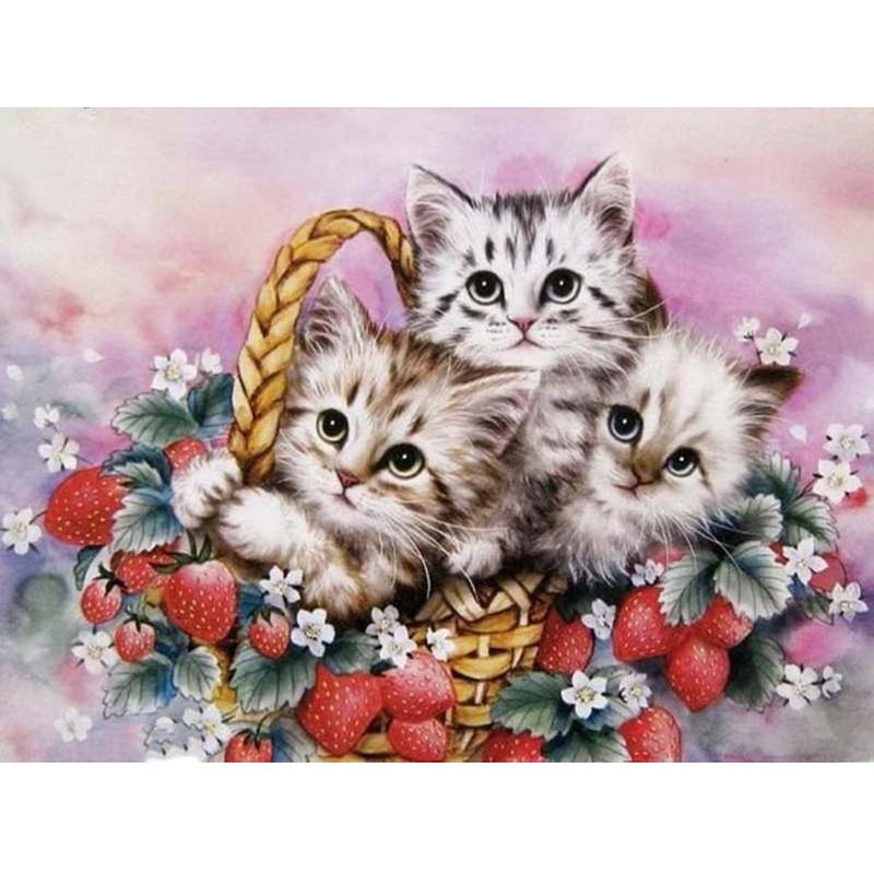 Дня отличного, открытки котенком