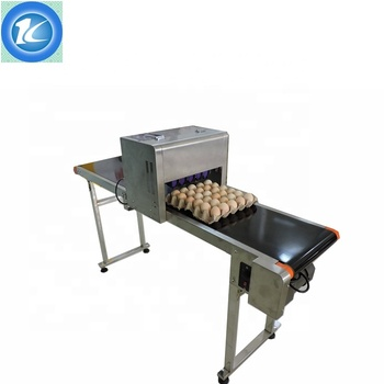 Automatic Egg Inkjet Printer With Conveyor / Egg Date Printing Machine
