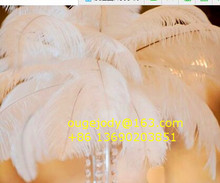 decorative long white ostrich feather for wedding decoration