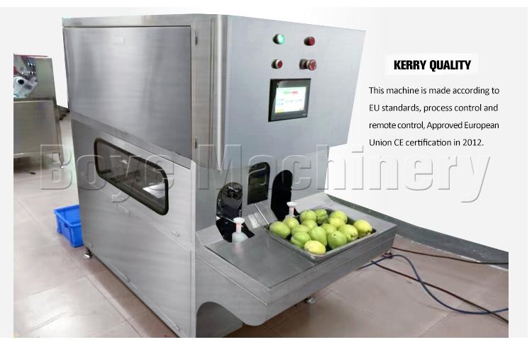 Niedrigen preis drachen obst schälmaschine/peeling maschine für obst und gemüse