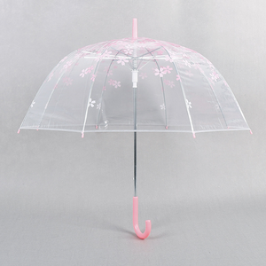 Cheap Plastic Clear Color Transparent Umbrella/Long Handle Frosted POE Plastic Umbrella
