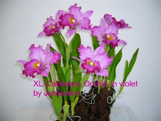 "Handmade Clay Flower "" XL-Cataleeya Orchid"""