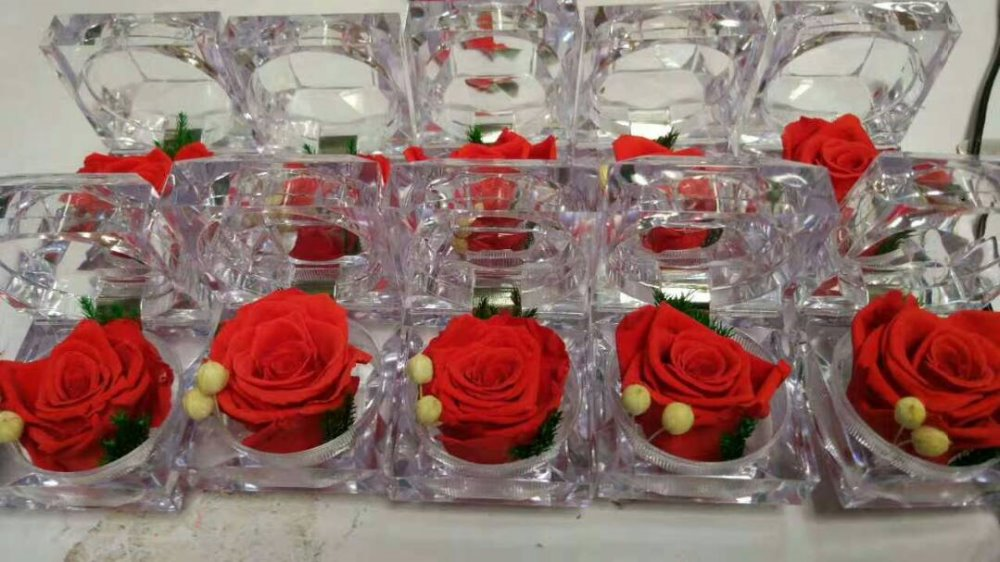 Preserved rose in ring box for valentines day gift