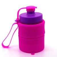 new products 2017 bpa free silicone foldable water bottle for sport water bottle