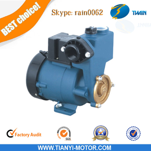 GP 125 self-sucking water pump AUPS/GP Self-priming Vortex Pump