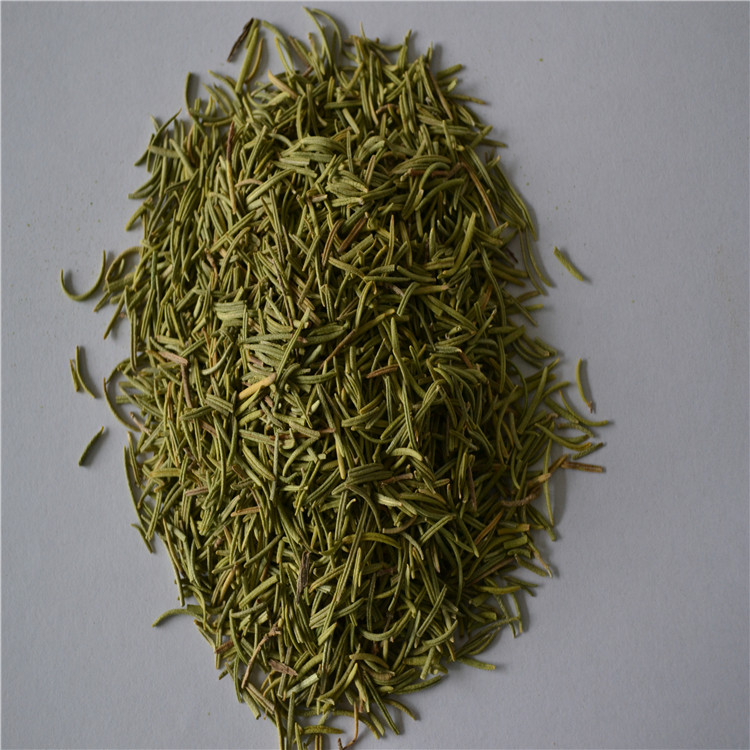 Hot sale air dried rosemary leaves for export usage