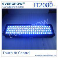 Evergrow IT2080 led aquarium light wholesale saltwater aquarium supplies