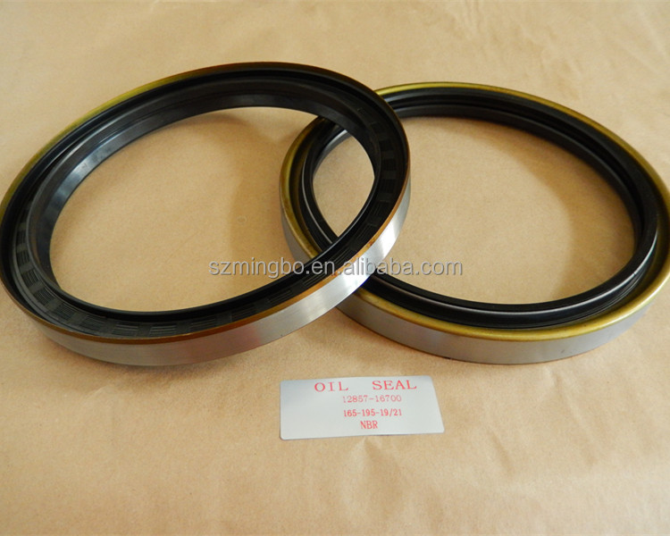 competitive price oil seal nok for 12857-16700 with size 165-195-19/21