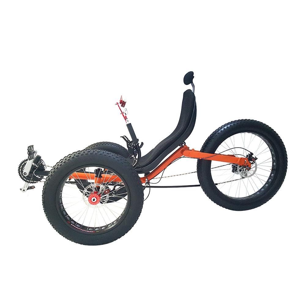 전면 두 바퀴 성인 여행 휴식 지방 타이어 전기 자전거 접이식 프레임 리어 허브 모터 레이스가 사용 휴식 트라이크