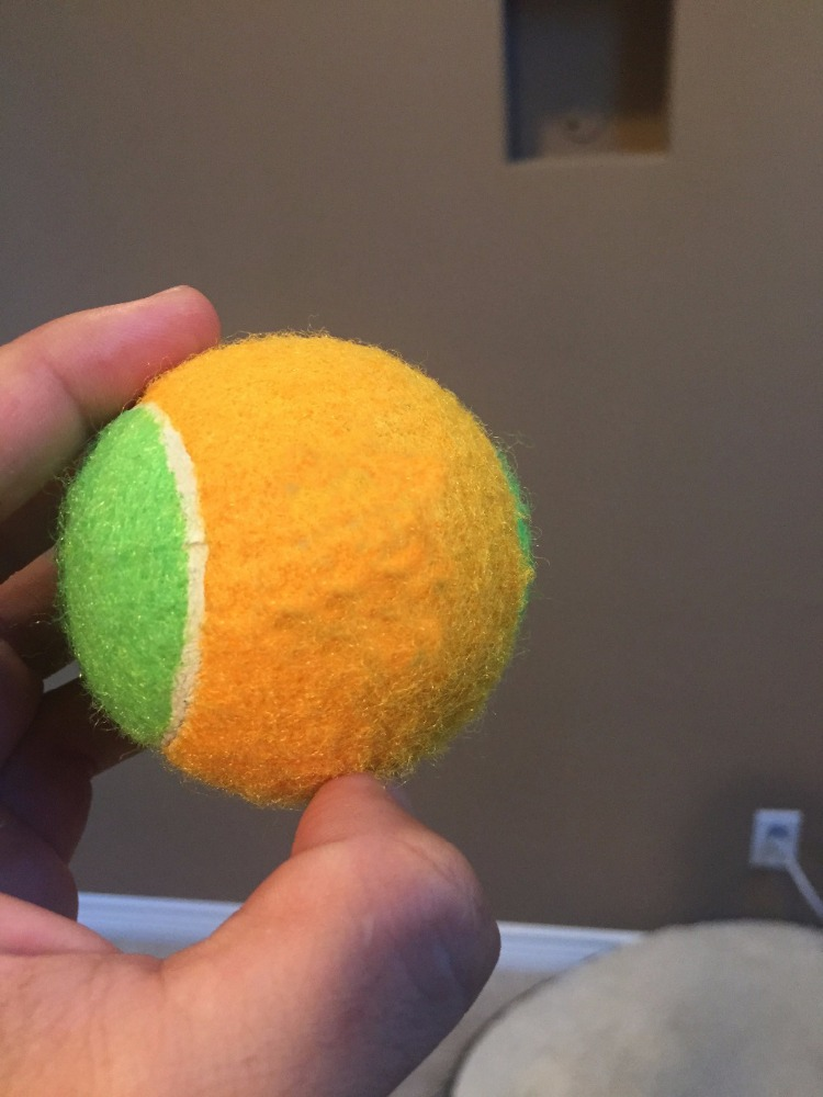customized pet tennis ball with belt