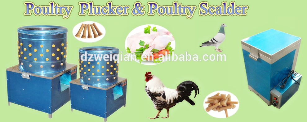 Wq Best Selling Cheap Chicken Plucker In Butchery Machine For Animal  Removing Feather(whatsapp:+86-17853481966) - Buy Cheap Chicken Plucker,High