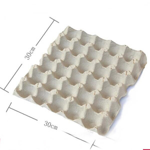 BAIYI Hot Sale Paper Pulp Egg Tray Egg Carton in Philippines, Pakistan,Kenya