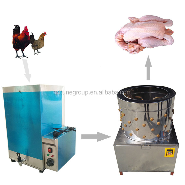 Codorniz plucker/China plucker pollo/pato plucker