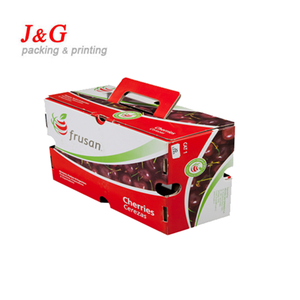 custom printed corrugated cardboard paper packing box for fruit packing
