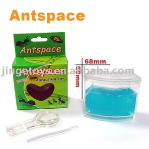 AntSpace & Ant works & Ants Farm