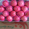 Fresh fuji apple exporter in china whole sale price