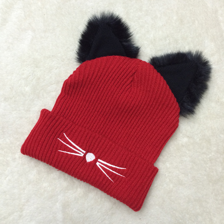 Lovely Plush Cat Ears Dome Stereo Embroidered Knit Hats For Women