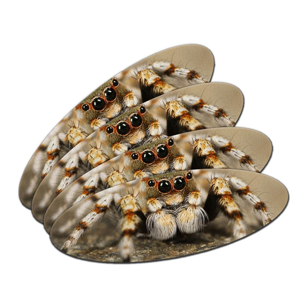 Jumping Spider - Close-up Double-Sided Oval Nail File Emery Board Set 4 Pack