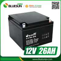 Bluesun gel solar battery charger 12v 26ah 28ah with ISO CE ROHS