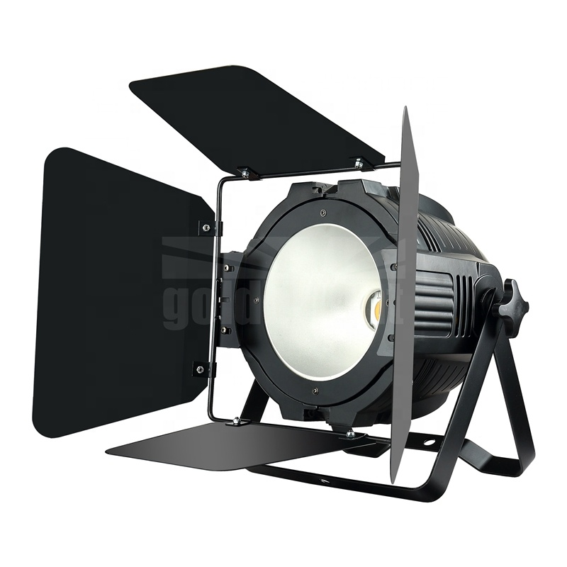 Warm Cool White COB Par Light LED pixel control Black Stage Lamp Baffle Audience Stage Light