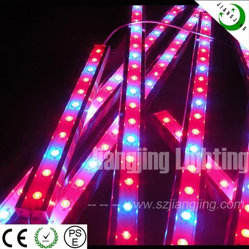 Hot! 30w Led Grow Lights Blue 460nm Red 630nm For Hydroponics Led ...