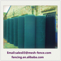 trade integration of large enterprises galvanized chicken hexagonal wire netting PVC coated hexagonal wire mesh