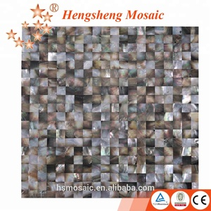 Abalone Shell Tile Interior Decorative Wall Tile