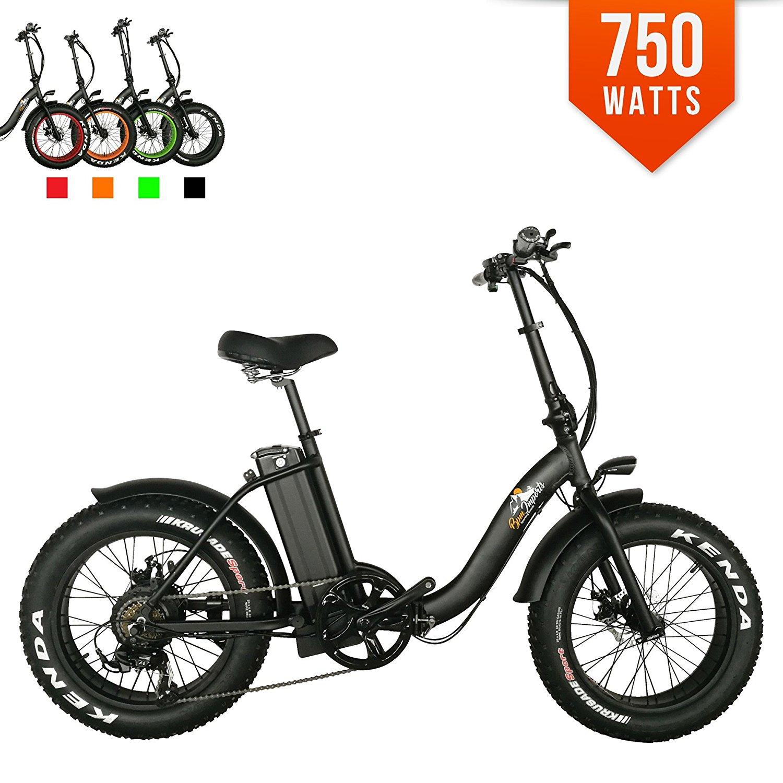 BPM F-15Z 750W 13AH Top Quality Fat Tire 48v Electric Bicycle Folding 20' E Bike