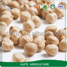 white Chickpeas cheap price 8-10mm