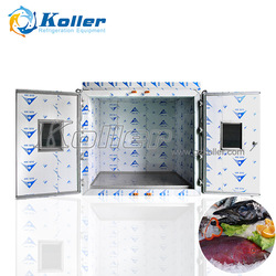 Koller 15tons Capacity Cold Room with High Density Insulation Panels