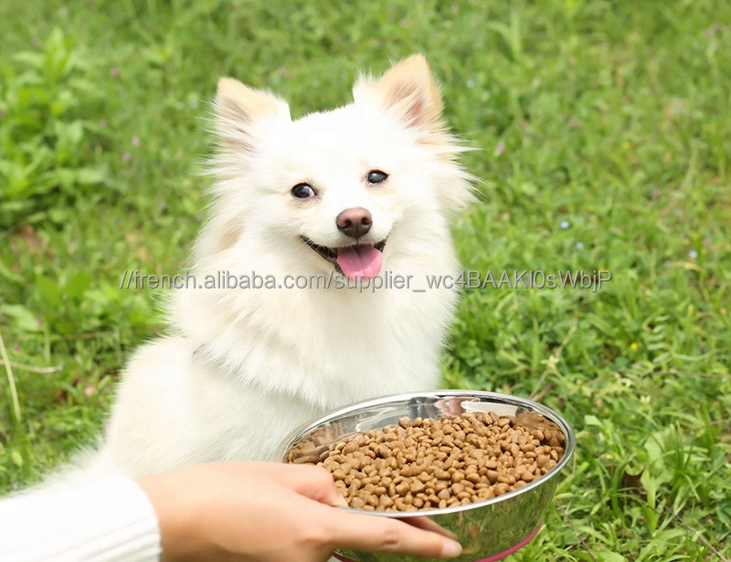 Portable rss lent pet chien bol