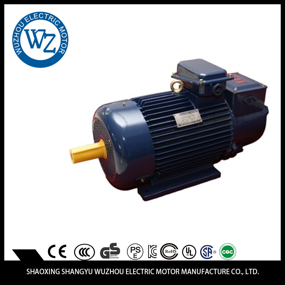 Excellent Dimension Auto Part Stability Surely brushless electric motor 4000w