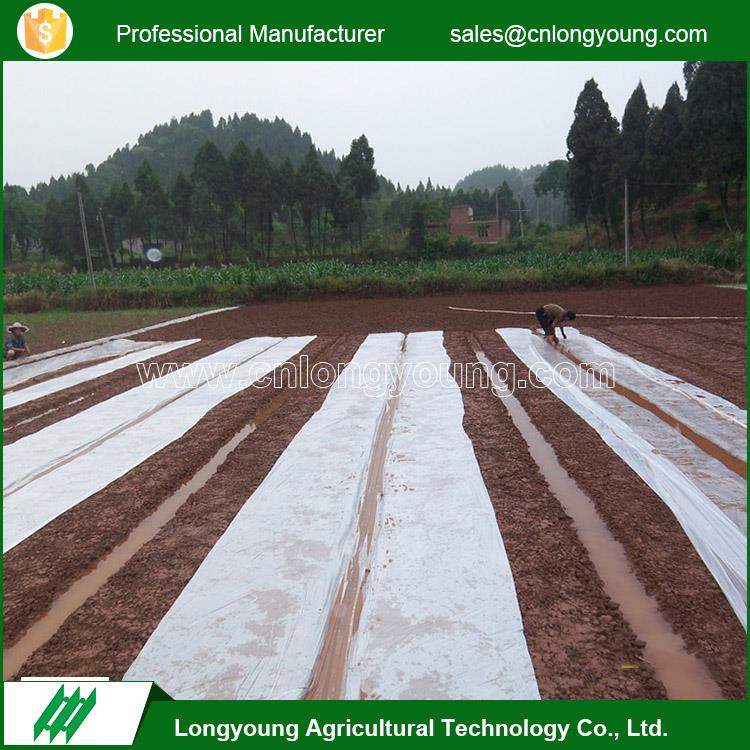 Wholesale eco-friendly agricultural durable plastic mulch layer