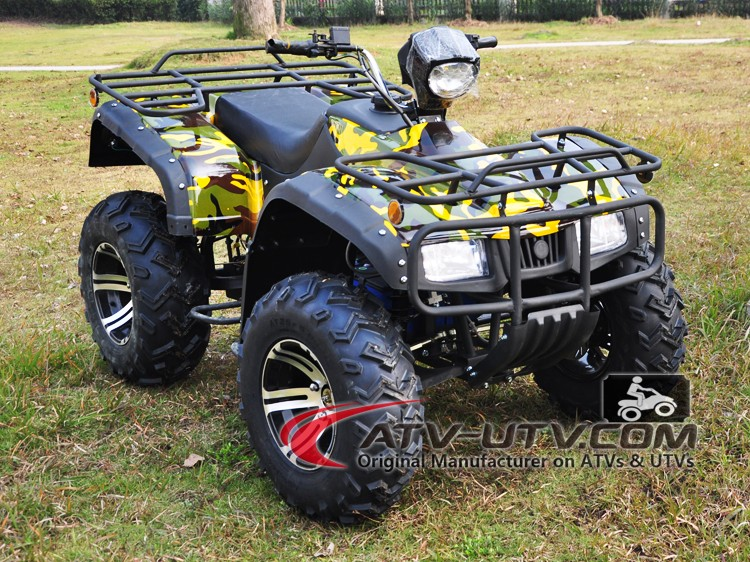 big powerful motor 2200 watt atv electric manufacturers from Wiztem Industry