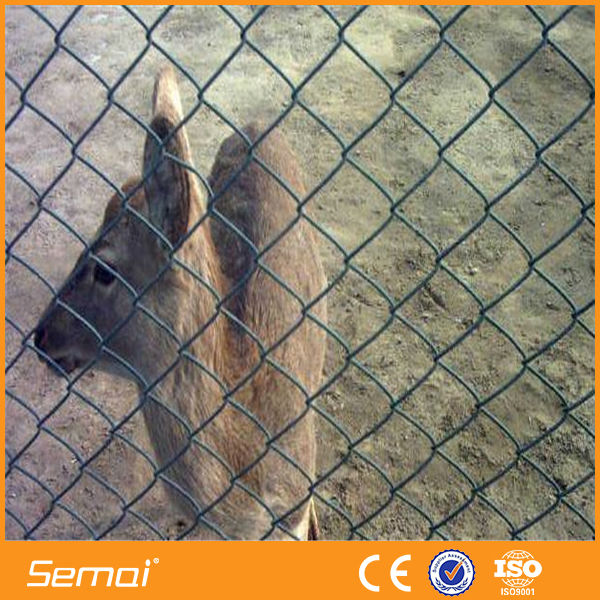 alibaba hot sale plastic cheap chain link dog kennels fence