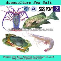 Aquaculture Sea Salt Fresh Seafood