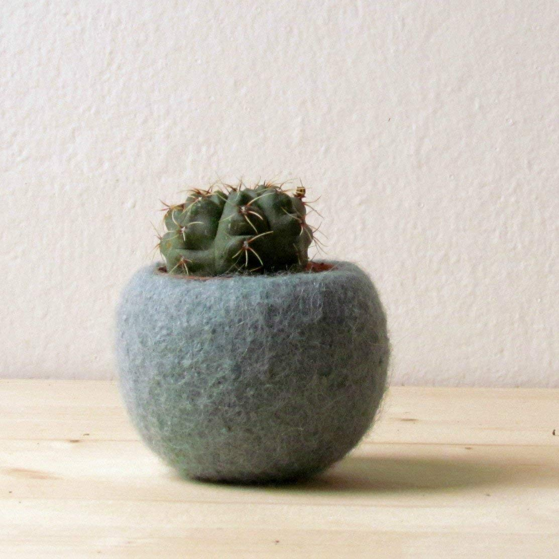 Succulent planter/air plant holder/cactus pot/plant vase/modern decor/winter decor