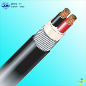 2x1.5mm2 2x2.5mm2 2x4mm2 2x6mm2 2x10mm2 600/1000V IEC 60502-1 CU / PVC / SWA / PVC Electrical Power Cable