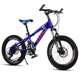 MTB sport fat tire trinx giant adult road mountain bicycle bike