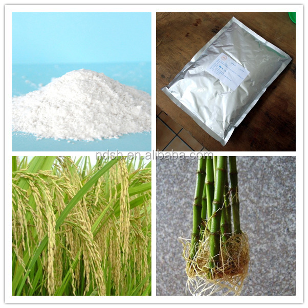 Naa 1-naphthalene Acetic Acid Plant Growth Regulator Agrochemical ...
