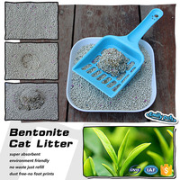 Largest manufactuer offer strong clay clumping cat litter