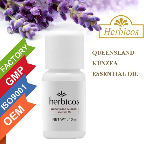 Queensland Kunzea perfume still essential oil wholesale